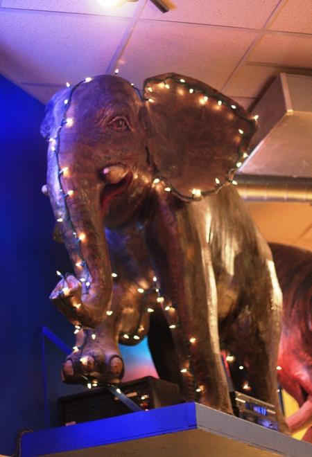 blue-elephant1