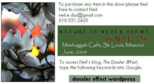 meshuggah show card