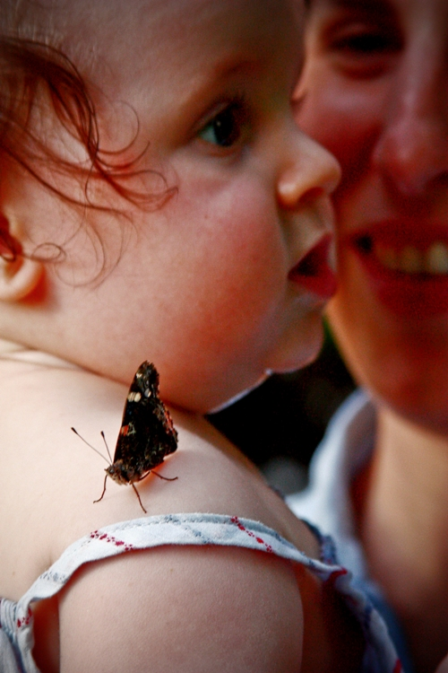 baby and moth fixed small