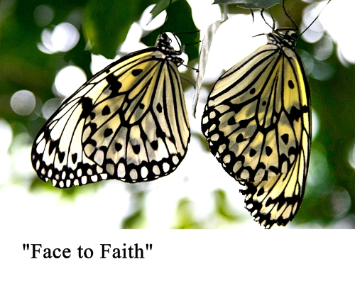 face to faith small