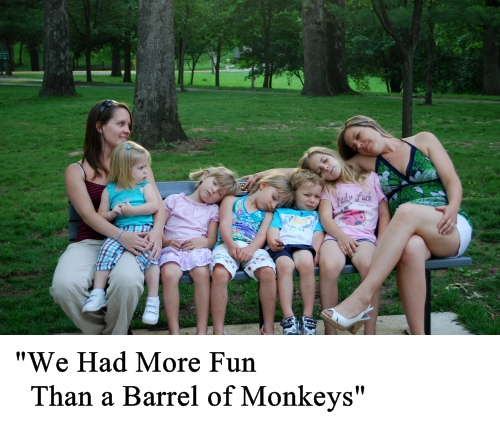 we had more fun than a barrel of monkeys small