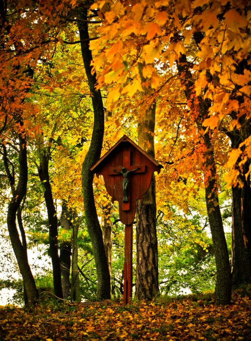 cross in fall leaves small