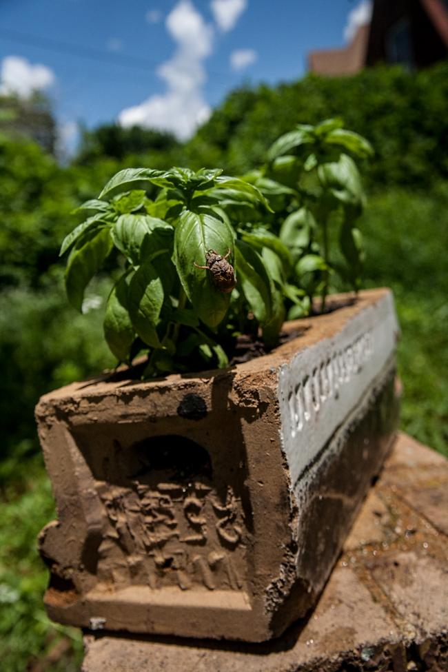 das haus garden-8 small