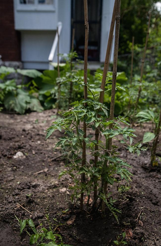 das haus garden-9 small