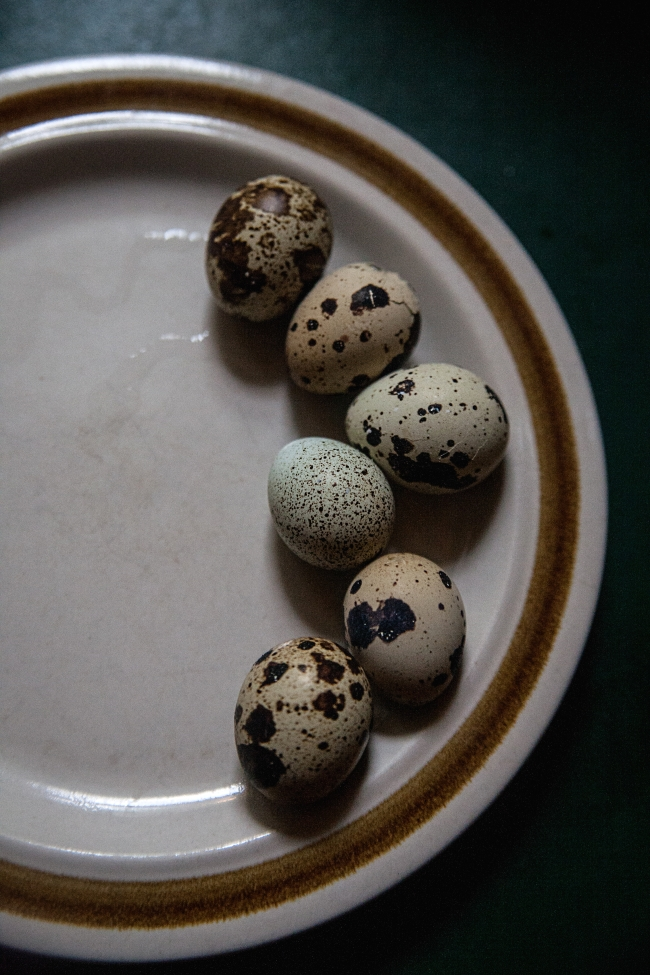 quail eggs al fresco-1 small