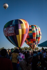 great forest park balloon race-2