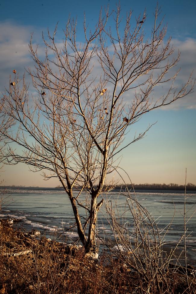 mississippi river ice freezing alton illinois-9 small