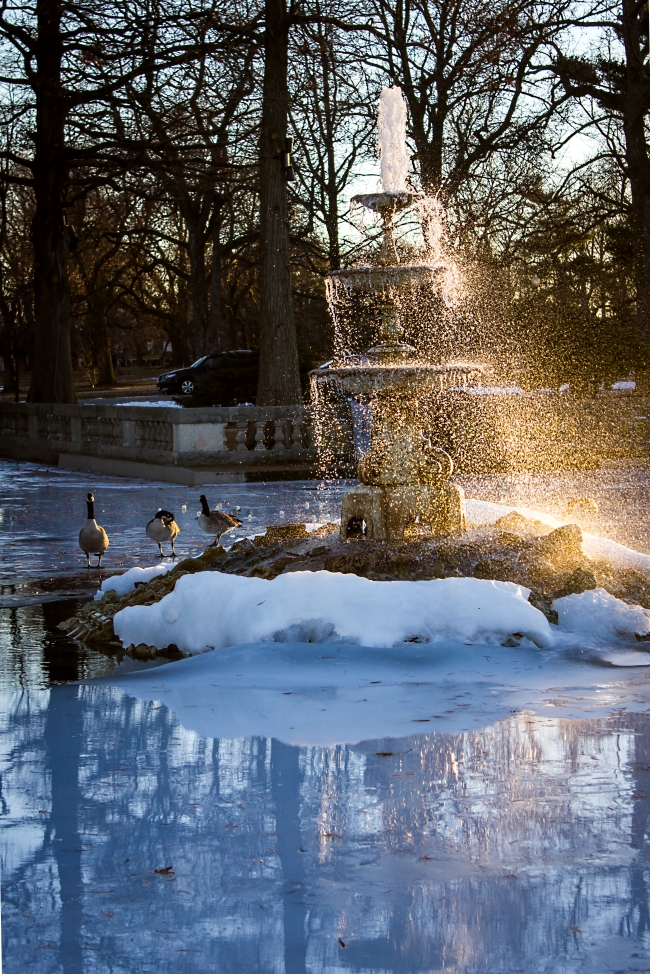 tower grove fountain in ice-2 small