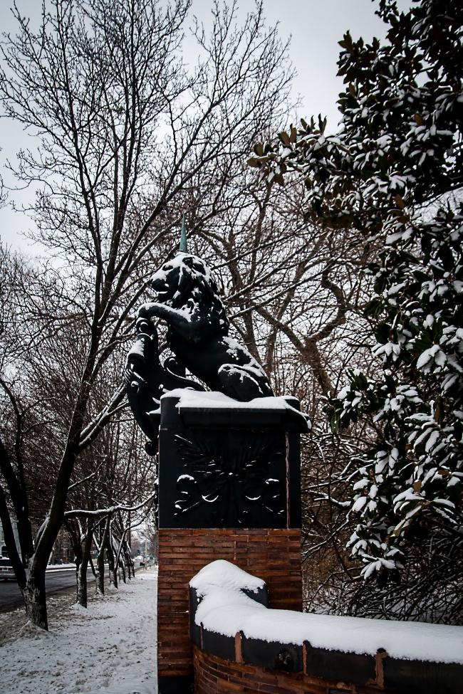 union avenue in winter saint louis-4 small