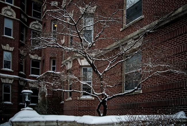 union avenue in winter saint louis-5 small