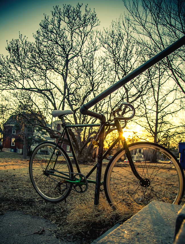 fixed gear and sunset with queen magnolia-1 small