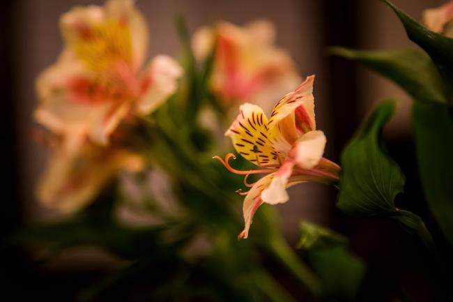 flower centerpiece-2 small