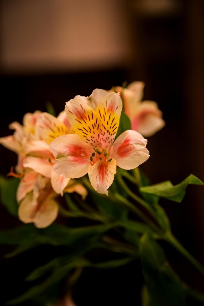 flower centerpiece-3 small