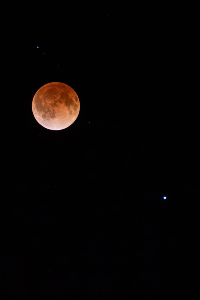 blood moon lunar eclipse saint louis missouri-1 small