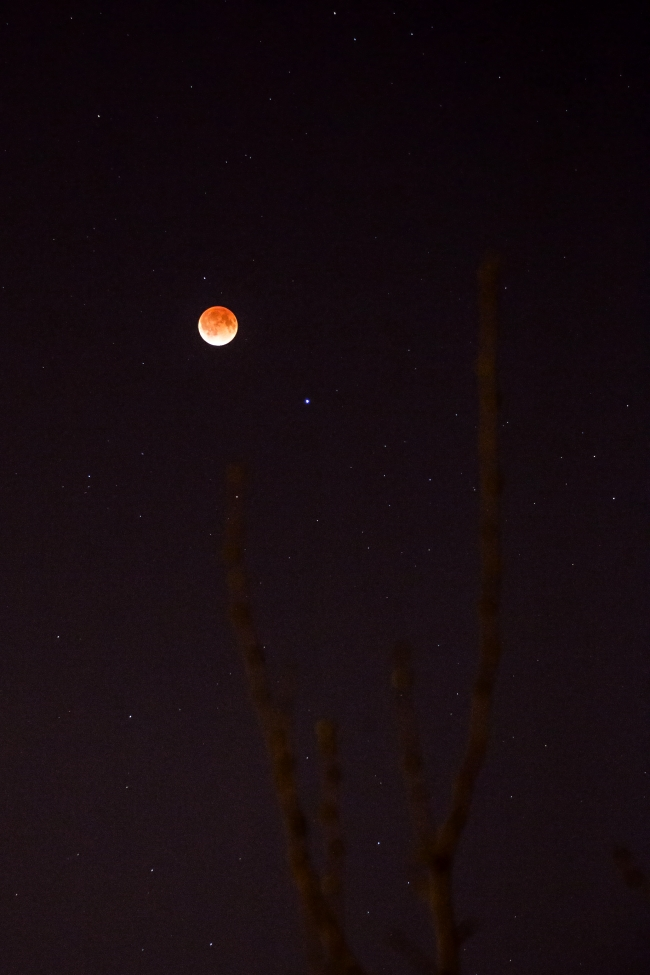 blood moon lunar eclipse saint louis missouri-2 small