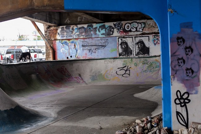 shitside graffiti3