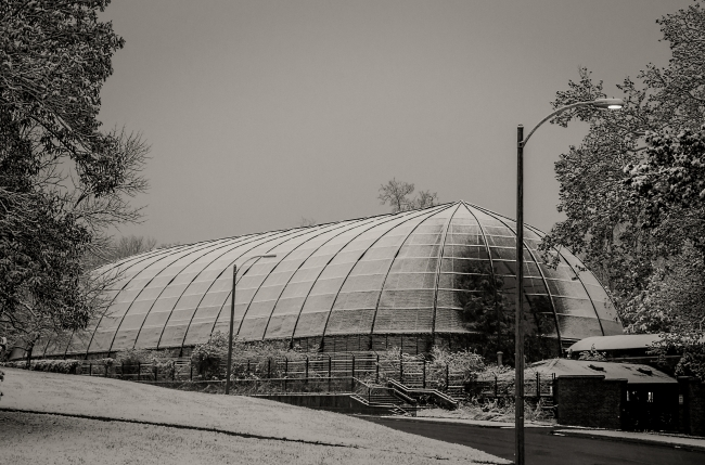 first snow 1904 flight cage saint louis zoo-1 small