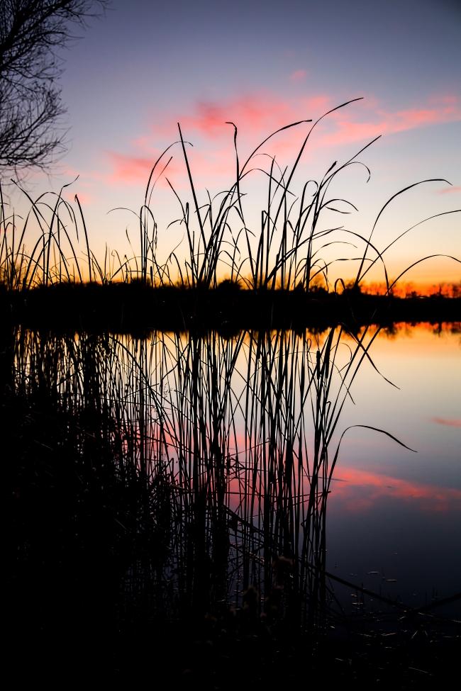 lake at sunset eastern oklahoma-3 small