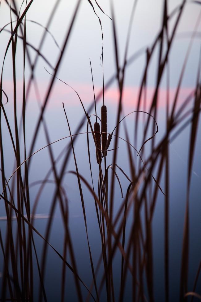 lake at sunset eastern oklahoma-5 small