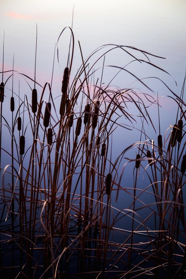lake at sunset eastern oklahoma-7 small