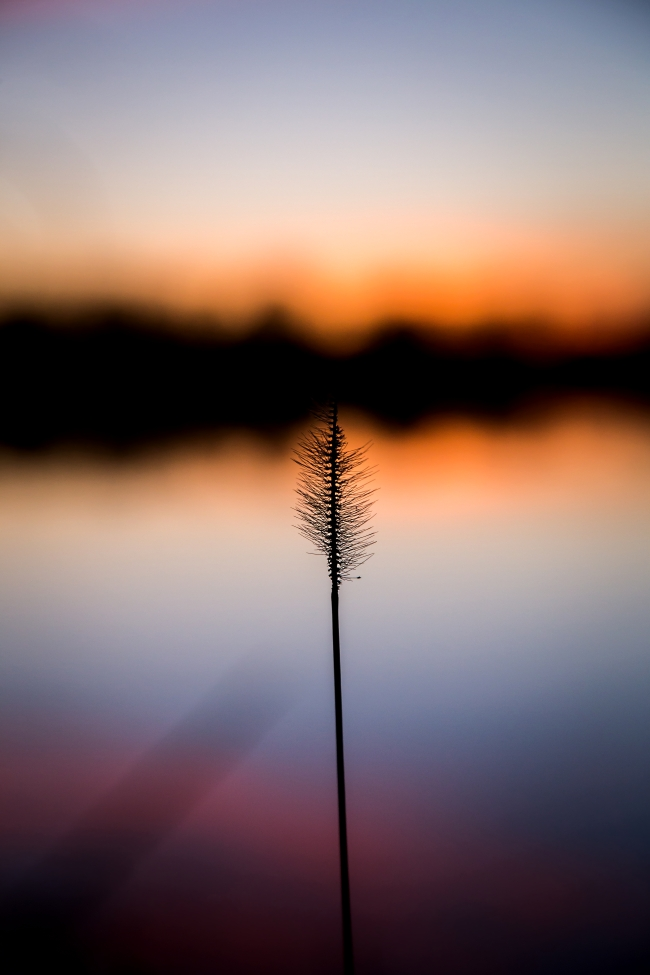 lake at sunset eastern oklahoma small