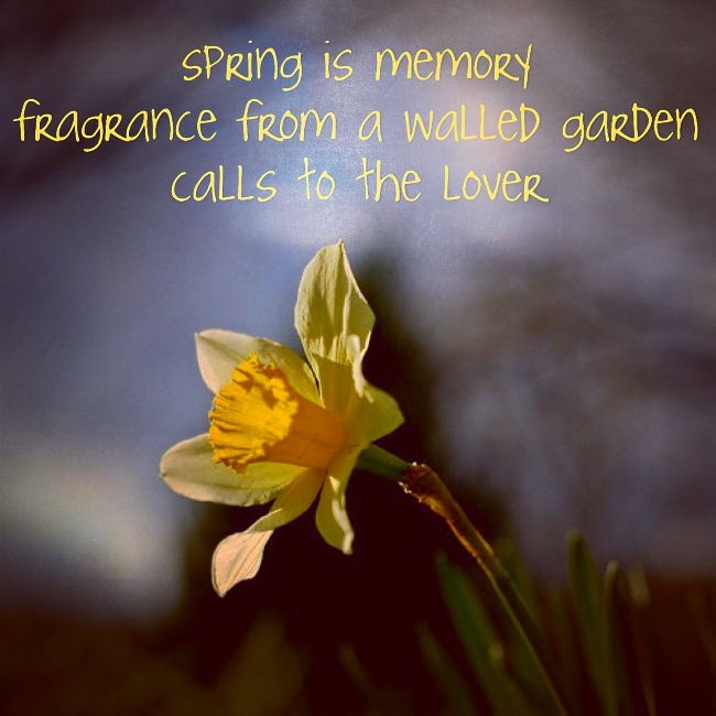 haiku uncycled spring