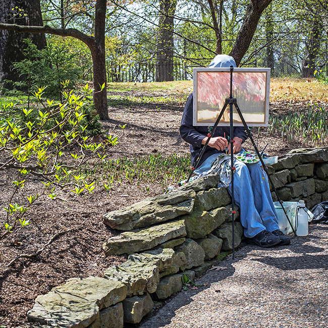 en plein air painter missouri botanical gardens-1 small