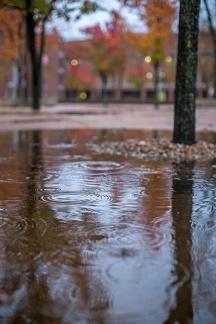 rainy day walk-15 small