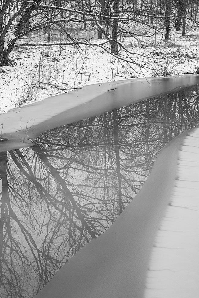 winter walk-13 small