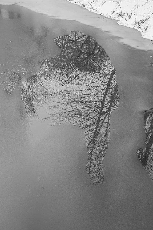 winter walk-14 small