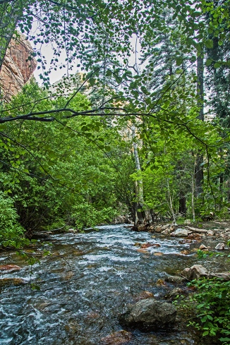 big cottonwood creek-2 small