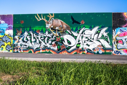 saint-louis-flood-wall-graffiti-1-small