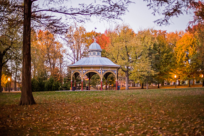 autumn-magic-tower-grove-park-5-small