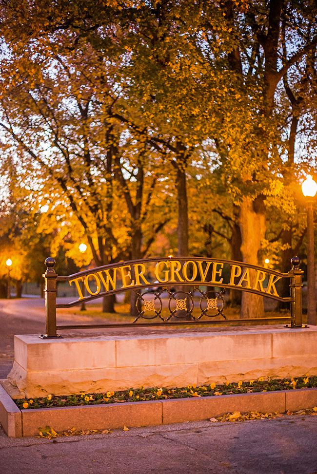 autumn-magic-tower-grove-park-6-small