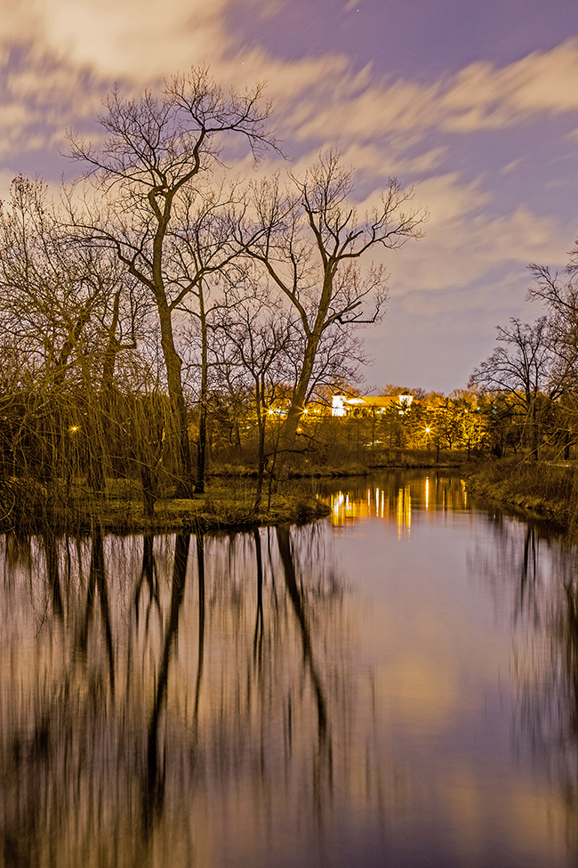 forest-park-at-night-1-small