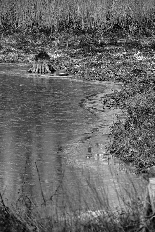 down-by-the-riverside-bw-1-small