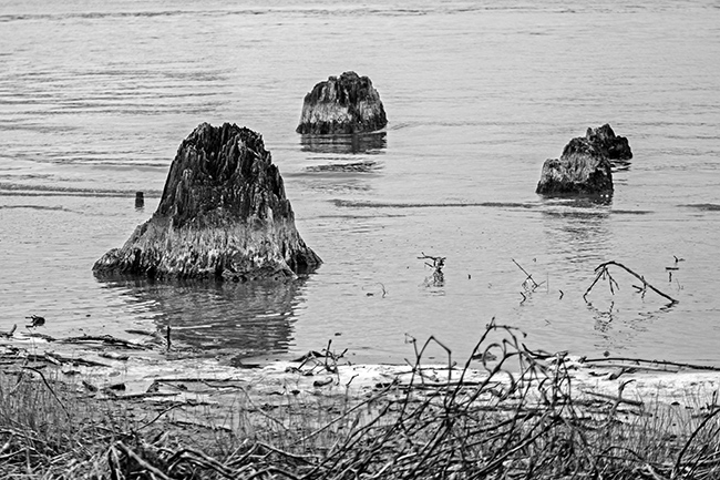 down-by-the-riverside-bw-12-small