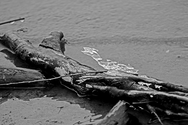 down-by-the-riverside-bw-13-small