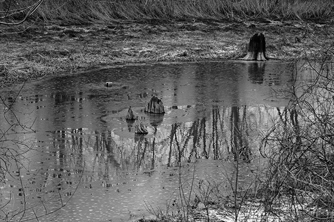 down-by-the-riverside-bw-3-small