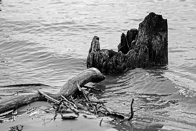 down-by-the-riverside-bw-7-small