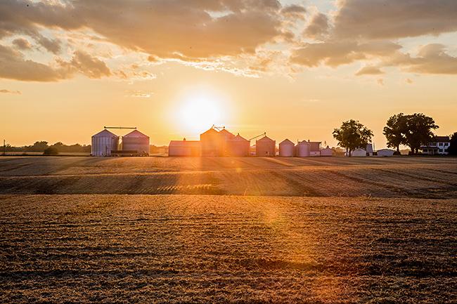 farmstead-1 small